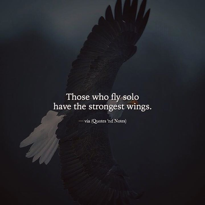 Those who fly solo have the strongest wings. —via http://ift.tt/2eY7hg4