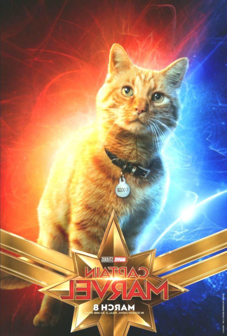 captain marvel movie poster featuring goose the cat! , #captain #cat