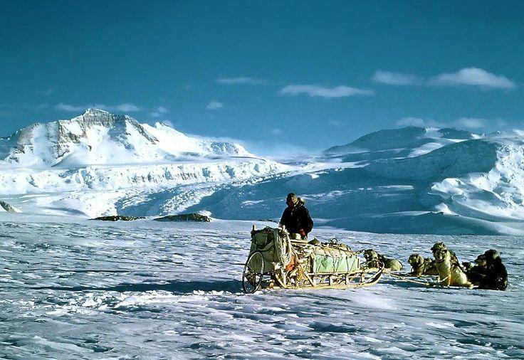 Kutuplarda güneş yatay hareket ediyor, geceler aylar boyunca sürüyor ve soğuk rüzgarların etkisi sürekli olarak hissediliyor. Kuzey kutbunun ince tabakasının hem altında hem üstünde değişik canlılar yaşıyor. Güney Kutbu'ndaki buz tabakası yaklaşık 2 bin 200 metre derinliğinde. Bu, tüm dünyadaki buzların yüzde 90'ına, tatlı su kaynaklarının da yüzde 70'ine eşit. Araştırmacılar, kutuplarda su altında yaşayan bambaşka canlılar keşfetti.