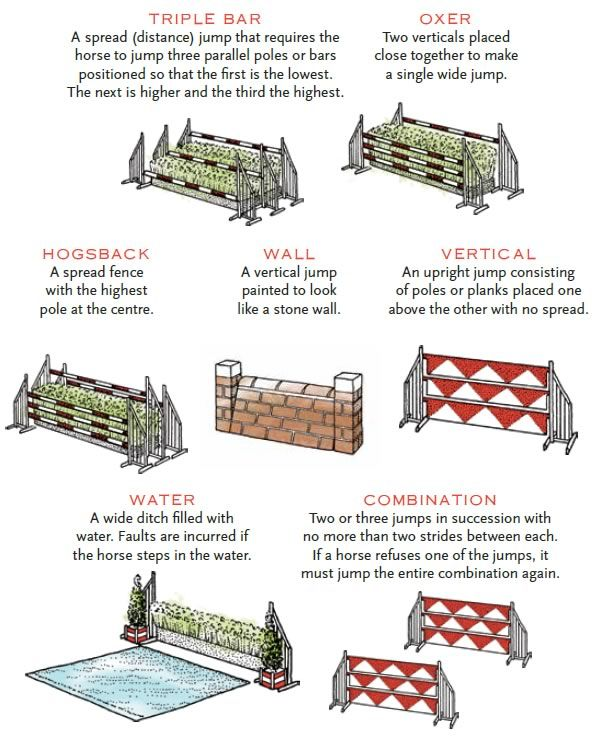 Horse Jump Types