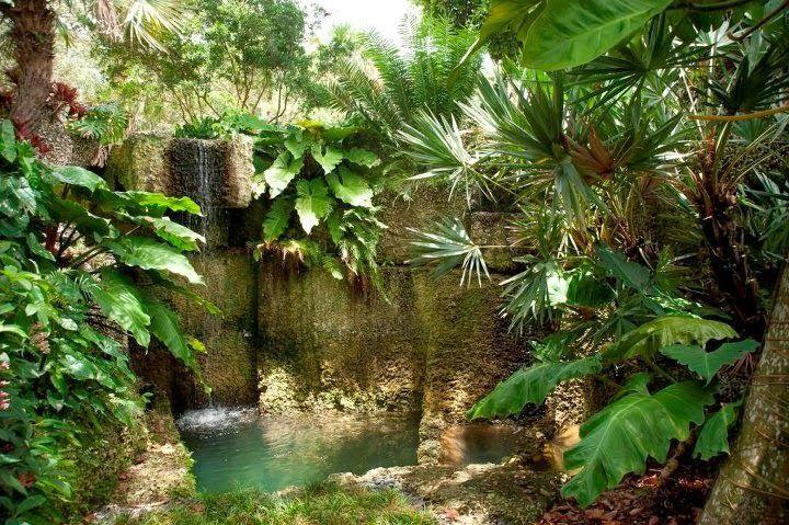 fotos jardins tropicais : fotos jardins tropicais:1000 ideias sobre Jardins Tropicais no Pinterest