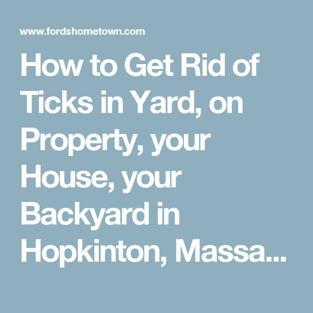 How to Get Rid of Ticks in Yard, on Property, your House, your Backyard in Hopkinton, Massachusetts – Deer, Dog Tick Home Removal for Hopkinton, Massachusetts