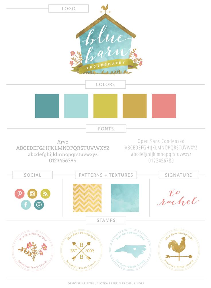Blue Barn Photography Branding Board  (colors)