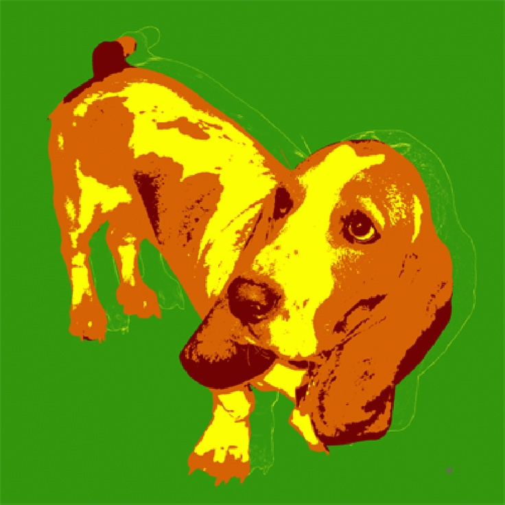 This artist in Florida paints these amazing custom Pop Dog Art Warhol style prints and posters   http://dogculture.net/dog-puppy-services/custom-pop-art-warhol-style-prints-and-posters-466.htm