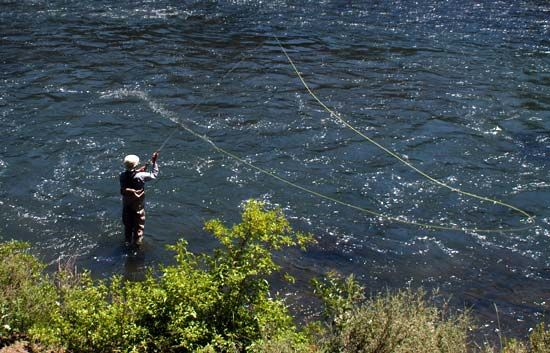 864 best images about fly fishing on pinterest discover for Fly fishing casting techniques