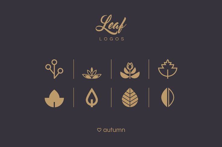 Leaf logos and patterns by Polar Vectors on @creativemarket
