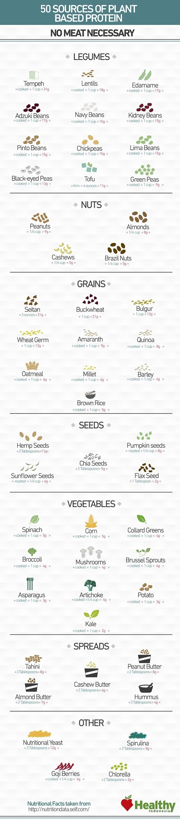 Vegan Protein Options.