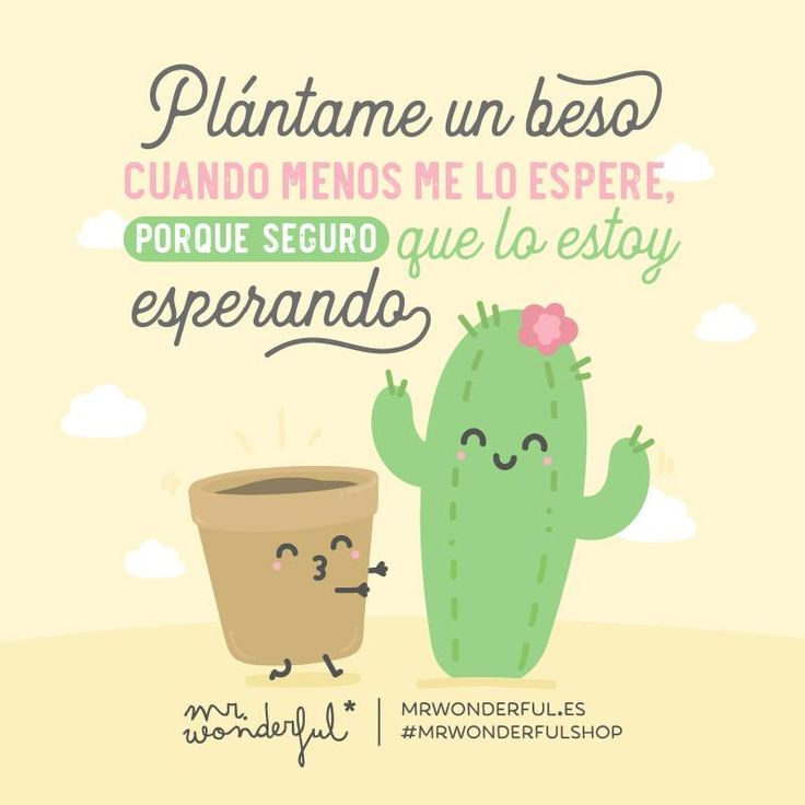 1146 best images about frases de mr wonderful on for Frases de mister wonderful