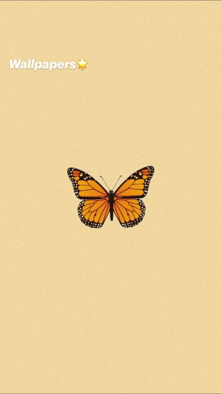Ed Wallpaper, Iphone Background Wallpaper, Colorful Wallpaper, Galaxy Wallpaper, Pastel Color Wallpaper, Animal Wallpaper, Butterfly Wallpaper Iphone, Cartoon Wallpaper Iphone, Iphone Wallpaper Tumblr Aesthetic