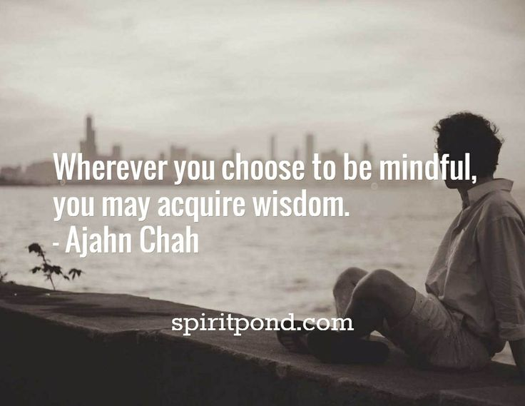 Wherever you choose to be mindful,  you may acquire wisdom. - Ajahn Chah / spiritpond.com