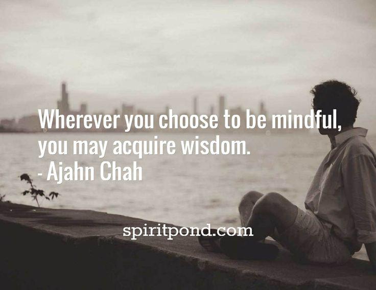 Wherever you choose to be mindful,  you may acquire wisdom. - Ajahn Chah / spiritpond.com