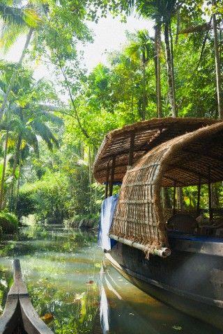 Beautiful backwaters of Kerala - Cochin, Kerala, India.