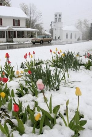 Spring in New England