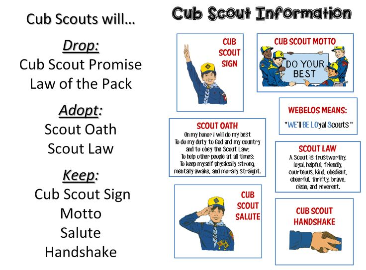 Canny image within scout oath and law printable