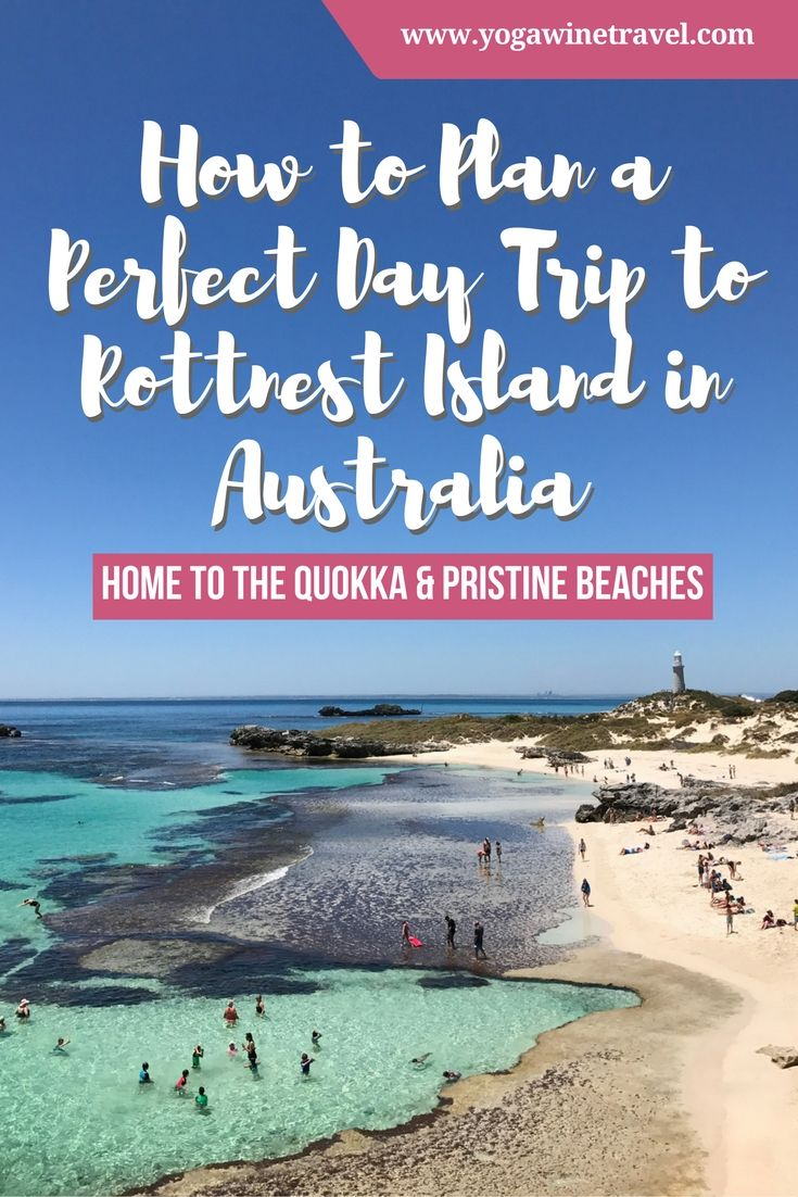 Yogawinetravel.com: How to Plan a Perfect Day Trip to Rottnest Island in Australia