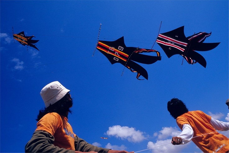 """Team members from Abian Base, Kuta, watch competitors kites as they prepare to launch their own on the competition grounds of the Bali Kite Festival. This was the first time the team had competed, and they flew two massive humming """"Bebean"""" kites. Tape stretched between two curved bows vibrates and hums in the wind as the kite flies. Large kites like this require large teams, often of 30 or more, to launch, fly and land the kite. Dozens of teams from all over the island gather regularly for…"""