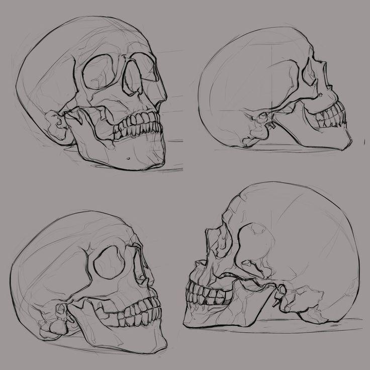 Aleksey (ksenolog.deviantart.com) - Cráneo                                                                                                                                                                                 Más