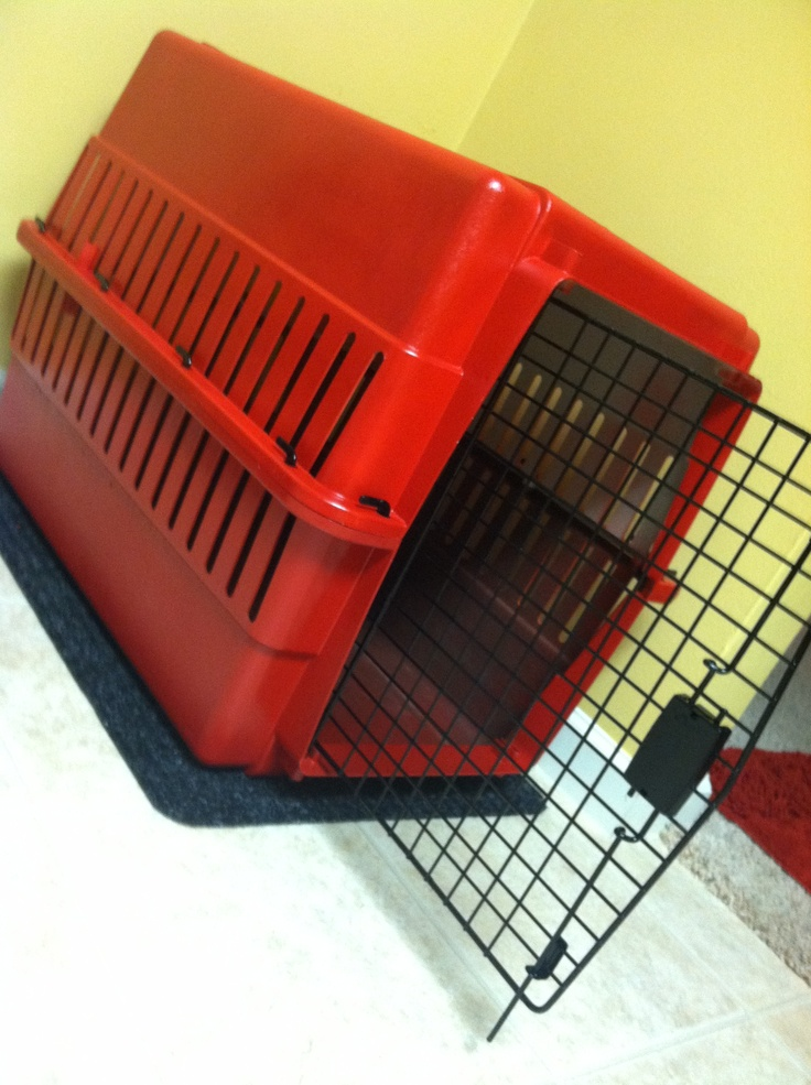 Turn an old boring dog cage; into a spicy new one!    Needed: 1 old dog cage; spray paint of your choice; & a little time.