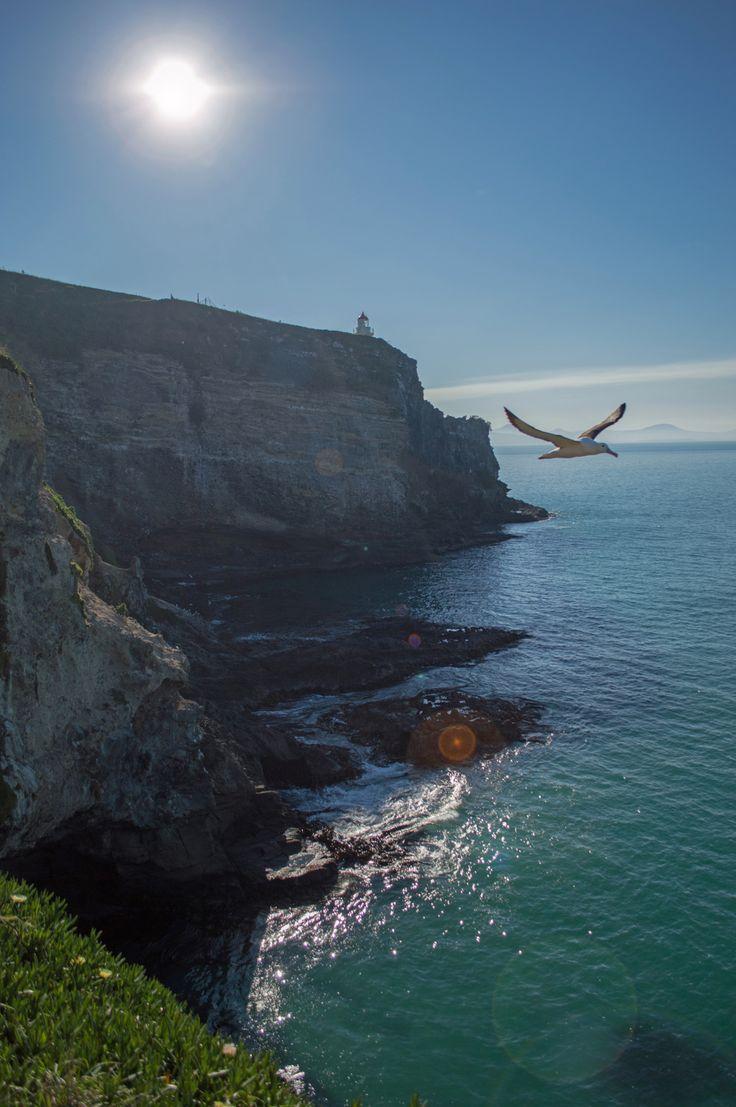 South Island road trip - Te Anau, Milford Sound & Dunedin