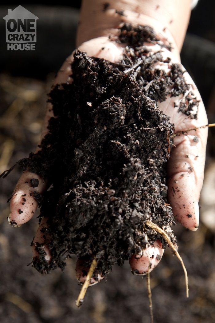 30 Things You Didn't Know You Could Compost