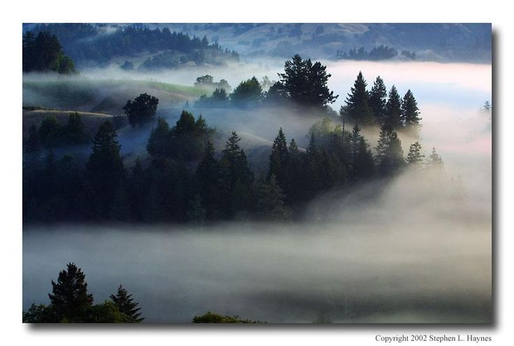 Fog in the Canyons - California - Pixdaus