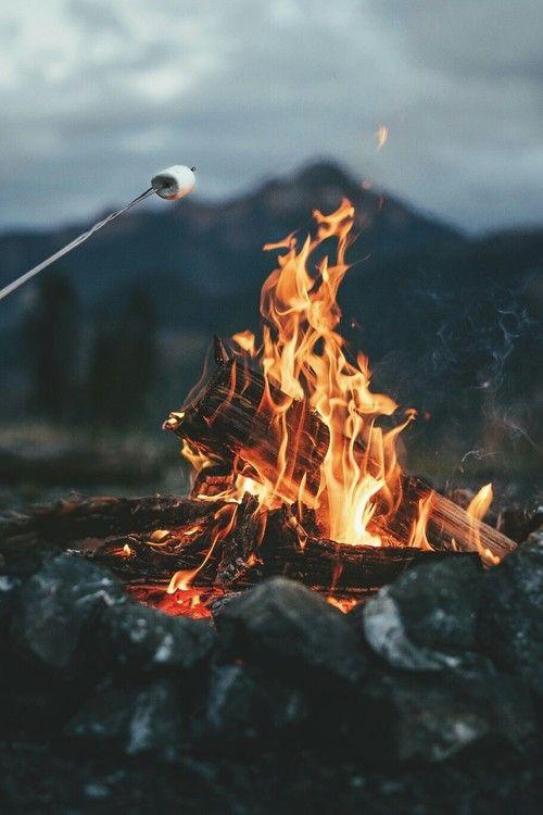 fire, marshmallow, and autumn kép