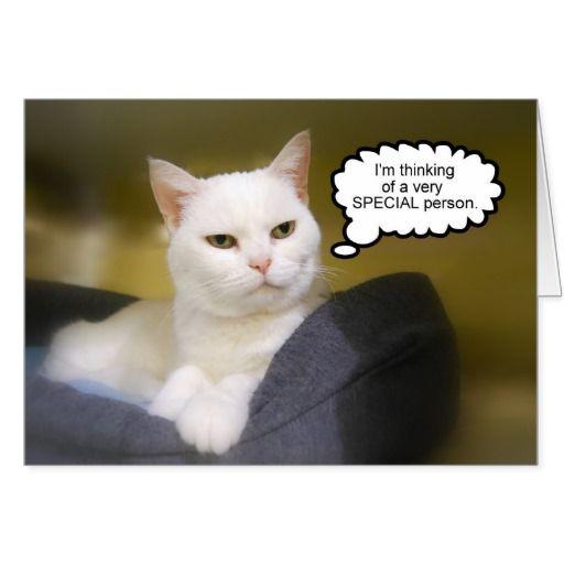Sister White Cat Birthday Humor Card