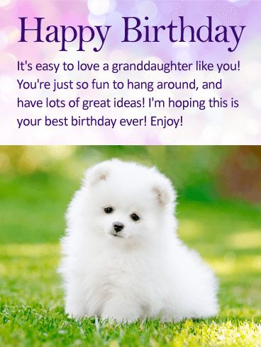 To my Fun Granddaughter - Happy Birthday Wishes Card: Granddaughters' make it easy to love them. They are so silly and special, so thoughtful and sweet. Send your granddaughter a terrific birthday message that she will love! This cute birthday card says it all and wishes your granddaughter the best birthday yet. Tell your granddaughter how fun she is with this awesome birthday card that you can easily send today!