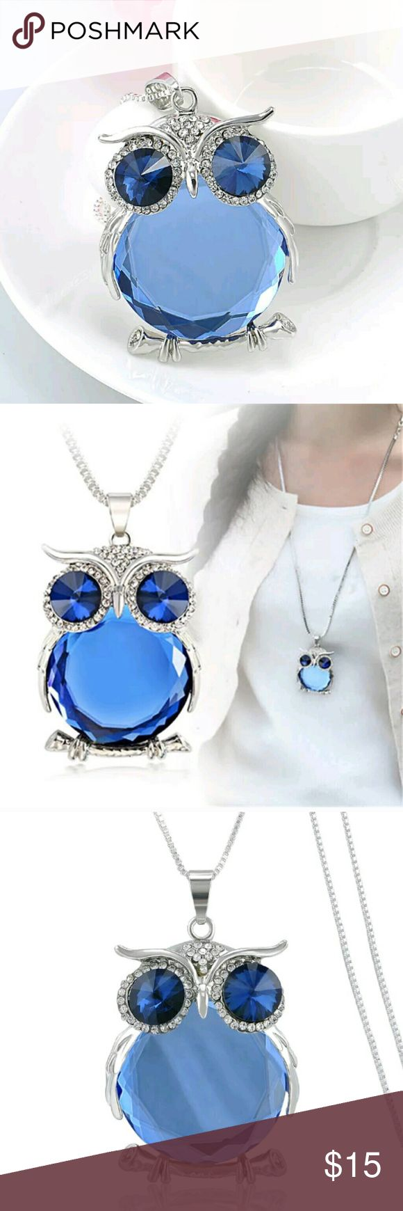 Fashion Owl Rhinestone Crystal w/ Chain Necklace Absolutely adorable owl pendant with rhinestone necklace. It comes with the chain. The chain  length is 76 centimeters. It is a silvertone and is brand new. Thank you for looking. Jewelry Necklaces