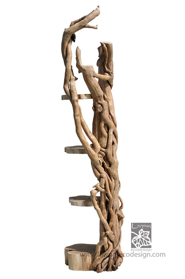 This cabinet is an allegory of the symbiotic relationship between acacia and ivy woods, the lateral load-bearing structure is made of ivy while the shelves are cylindrical sections of an acacia trunk. #LivyngEcodesign #library #driftwood #naturalwood #design