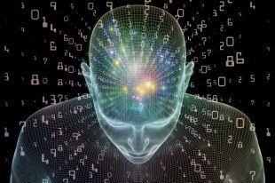 Шевели извилинами! Какие упражнения тренируют мозг | Психология жизни | Здоровье | Аргументы и Факты