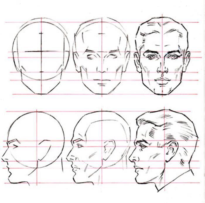 встречался картинки как нарисовать голову человека поэтапно началу