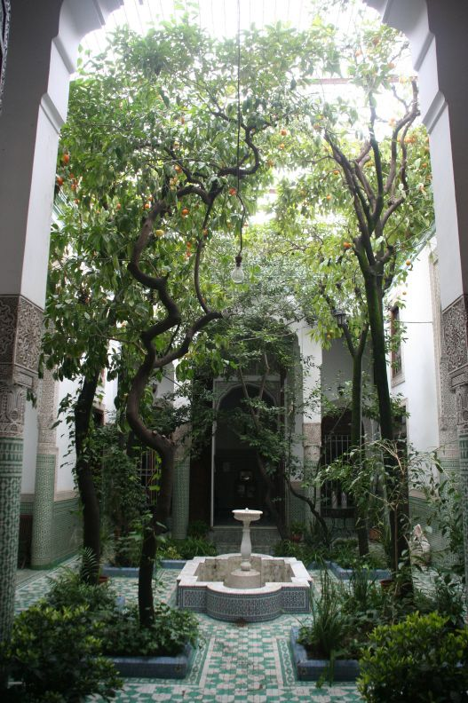 ALIF Riad : Study/Culture Center (ALIF = Arabic Language Institute in Fez)