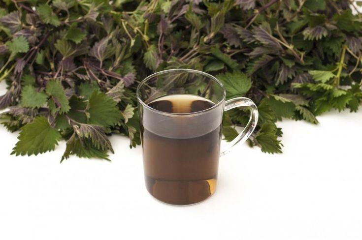 А удобрение под ногами — «сорняковая болтушка», или «травяной чай». Как сделать удобрение из травы своими руками? Фото - Ботаничка.ru