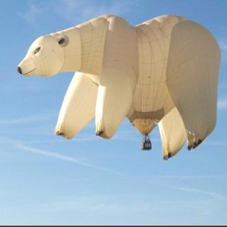 Polar bear hot air balloon: Airballoon, Hotair, Bears Balloon,  Polar Bears, Polarbear, Things, Hot Air Balloons, Ice Bears, Bears Hot