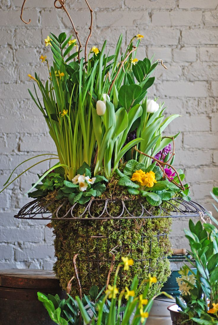 best spring images on pinterest