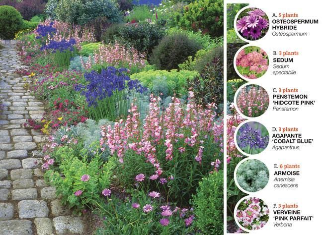 Une bordure colorée en fleurs tout l'été