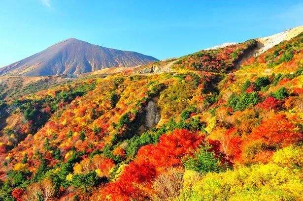 「紅葉 山」の画像検索結果