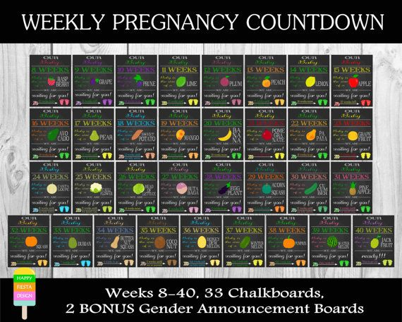 Printable Pregnancy Countdown Chalkboards -Weekly Pregnancy Countdown-Pregnancy Photo Props-Weeks 8-40-(33 Signs)-Size 8x10 or 16x20