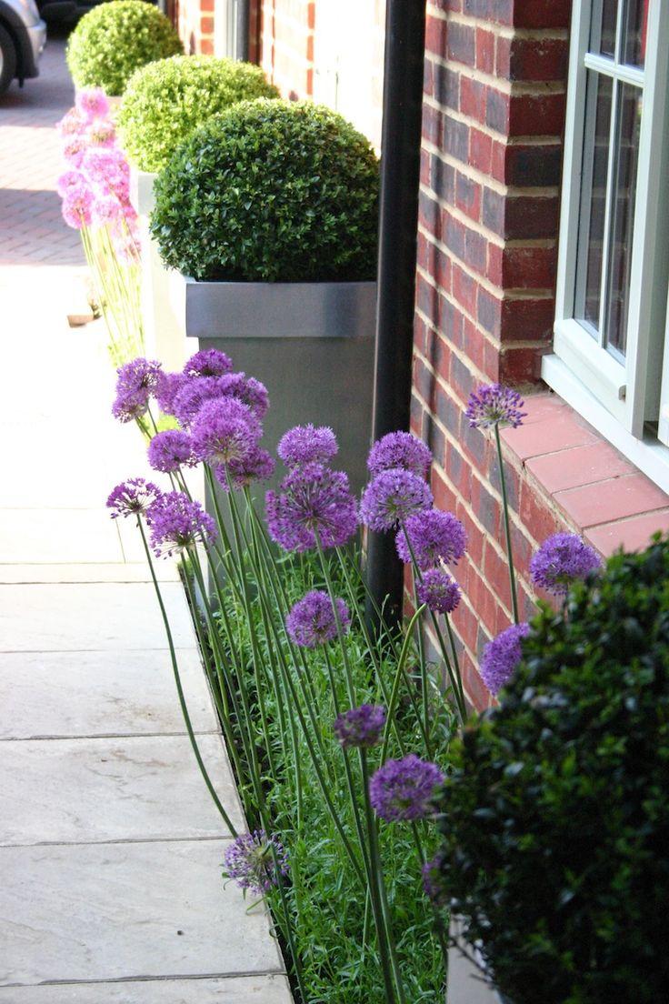 Garden design ideas 10 handpicked ideas to discover in other for Garden design for narrow gardens