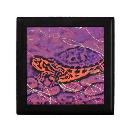 Purple Turtle Jewelry Box - photos gifts image diy customize gift idea