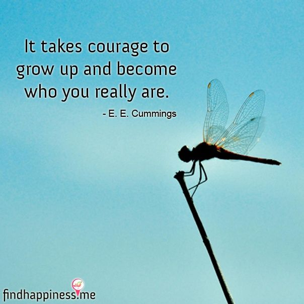 Dragonfly Have Beautiful Day Quotes