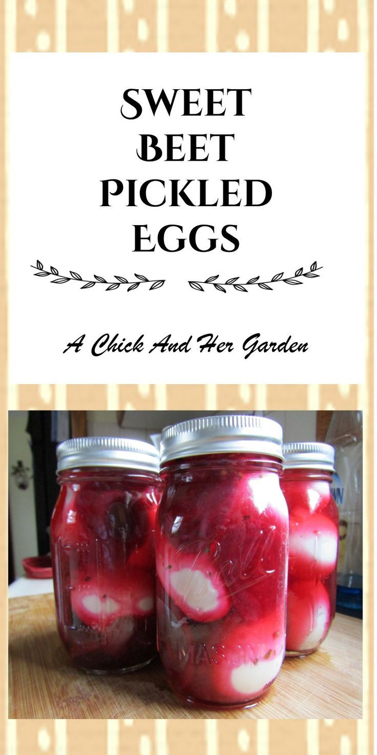 Sweet Beet Pickled Eggs - A Chick And Her Garden
