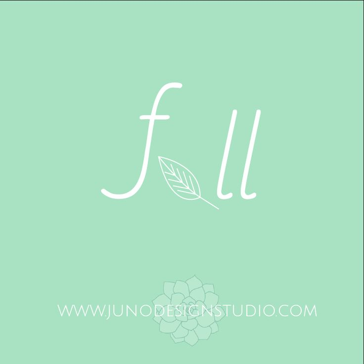#logo #logodesign #design #branding #brandingdesign #mint #leaf #graphicdesign #webdesign #colors #minalmist