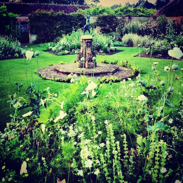 8 best Super Garden Dublin garden – Get the look! images on ...