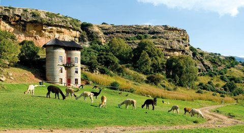 South Africa's top 10 whacky hotels