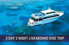 Pro Dive Cairns.  Best place on earth to learn to dive.  Not a bad place to do some diving either.