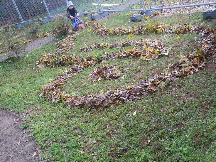 Leaf road / maze