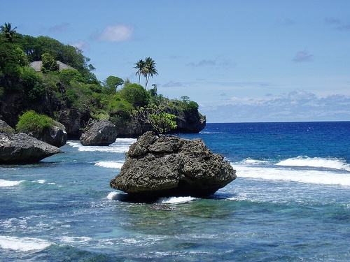 christmas island animals 17 beste ideen over christmas island op pinterest australi