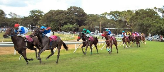 Discover why the Sandy Lane Barbados Gold Cup is the most anticipated horse race on the island...